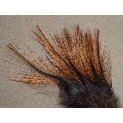 Encendido - 12 feathers