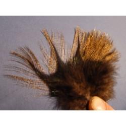 Corzuno medio - 12 feathers
